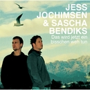 Das wird jetzt ein bisschen weh tun/Jess Jochimsen & Sascha Bendiks