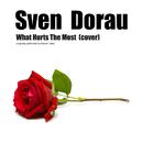 What Hurts The Most [Rascal Flatts acoustic cover]/Sven Dorau