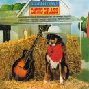 Dawg Grass/David Grisman