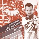 Feel My Spirit (Remixes Part 1)/Diamond Dealer