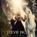 In Your Dreams/Stevie Nicks