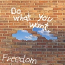 Do what you want/FREEDOM