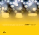 Echoes of Techno/Christian Muthspiel & Wolfgang Muthspiel