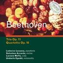 Trio op. 11 - Quartetti Op. 16/Salvatore Accardo / L. Lessona / L. Moffa / U. Egaddi