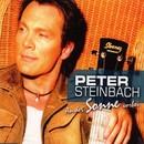 An der Sonne vorbei/Peter Steinbach