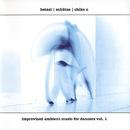 Improvised Ambient Music For Dancers Vol. 1/Hetzel, Schütze, Chiko U