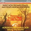 Komm, Trost der Welt, du stille Nacht/Norddeutscher Figuralchor, Jörg Straube