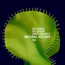 Fur/Natural History feat. Joe Morris