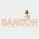 Les moments importants - Best of Véronique Sanson/Véronique Sanson