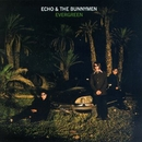 Evergreen/Echo and The Bunnymen
