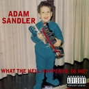 What The Hell Happened To Me? (DMD Album)/Adam Sandler