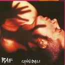 Cannibali/Raf