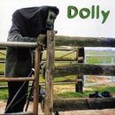 Sunday Afternoon/Dolly