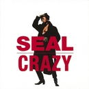 Crazy/Seal