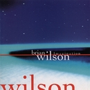 Imagination/Brian Wilson