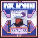 Destively Bonnaroo/Dr John
