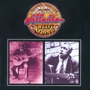 Atlanta Twelve String/Blind Willie McTell