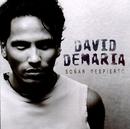 Soñar despierto/David Demaria