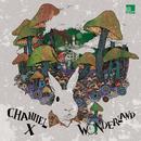 Wonderland Remixed/Channel X