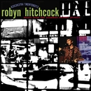 Storefront Hitchcock: Music From The Jonathan Demme Picture/Robyn Hitchcock