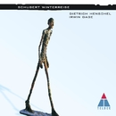 Schubert : Die Winterreise/Dietrich Henschel & Irwin Gage
