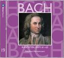 Bach, JS : Sacred Cantatas BWV Nos 61 - 63/Nikolaus Harnoncourt