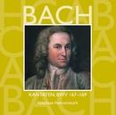 Bach, JS : Sacred Cantatas BWV Nos 167 - 169/Nikolaus Harnoncourt