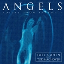 Angels - Voices from Eternity/Joël Cohen & Boston Camerata