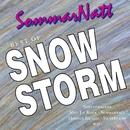 Best Of/Snowstorm