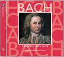Bach, JS : Sacred Cantatas BWV Nos 26 - 29/Nikolaus Harnoncourt