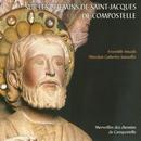 On the Footsteps of Saint-Jacques de Compostelle/Ensemble Amadis