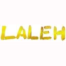 November (DMD Singel)/Laleh