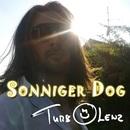 Sonniger Dog/Turbolenz