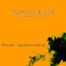 Three Spacewalker/Spacelab Muzic