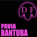 Bantuba/Pavia