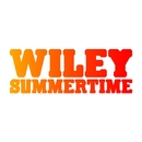 Summertime (International Single DMD)/Wiley