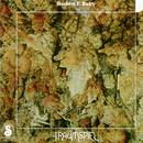 Traumspiel/Herbert F. Bairy