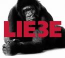 Liebe 3/Hagen Rether