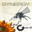 DJ Gard Presents Synergy (Vol.1) [50 Techno, Trance & Electro Anthems]/DJ Gard