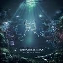 Immersion/Pendulum