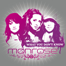What You Don't Know (Maxi)/Monrose