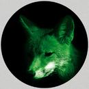 It's Time for New Stuff EP/Greenbank & Andri