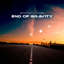 End of Gravity/Prophetic Noise