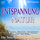 Entspannung, Natur, Entspannungsmusik - die SyncSouls Compilation/Max Entspannung