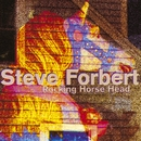 Rocking Horse Head/Steve Forbert