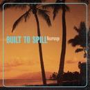 Rearrange/Built To Spill