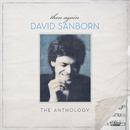 Then Again: The David Sanborn Anthology/デヴィッド・サンボーン
