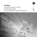 Bach, JS : Organ Works  -  Apex/Herbert Tachezi