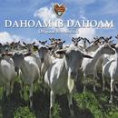 Dahoam is Dahoam - Original Soundtrack/Die Lansinger & Superstrings