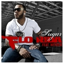 Sugar (feat. Wynter)/Flo Rida